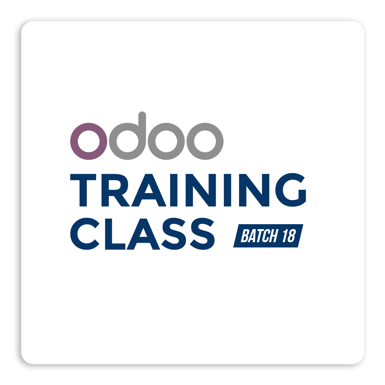 Odoo Technical Training
